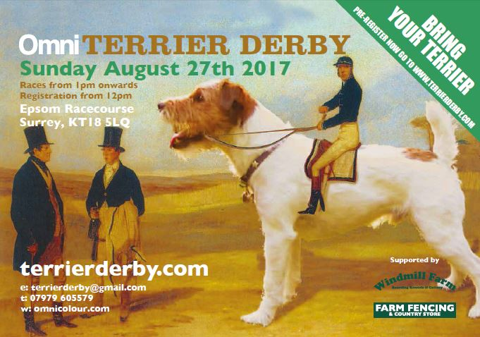 The Omni Terrier Derby