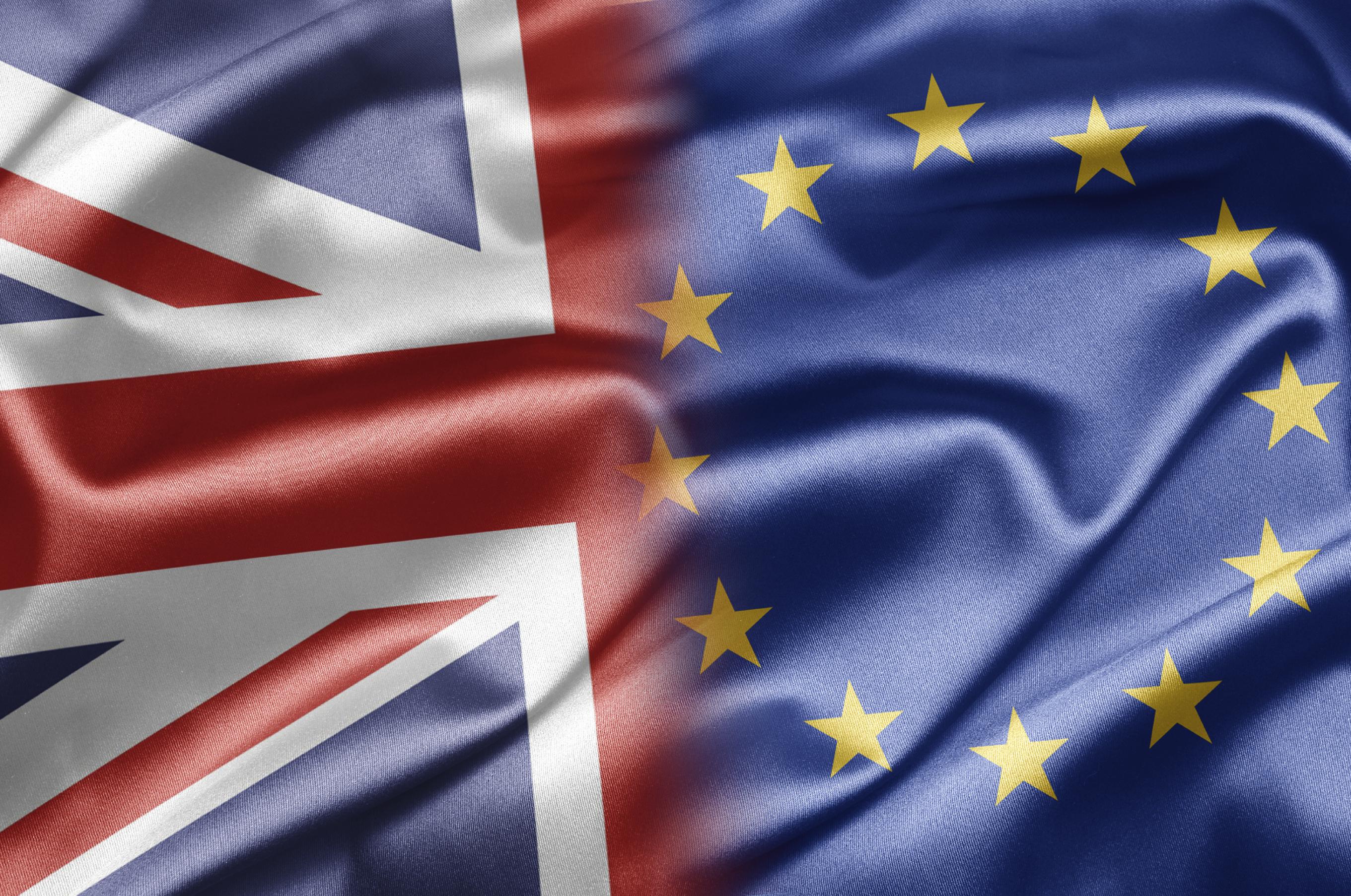 EU referendum - Brexit or Brin?